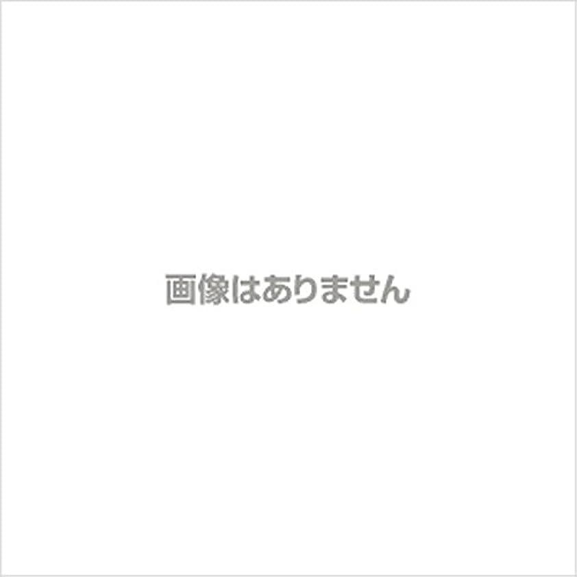 散らす海外服【新発売】EBUKEA エブケアNO1004 プラスチックグローブ(パウダーフリー?粉なし)Sサイズ 100枚入(極薄?半透明)