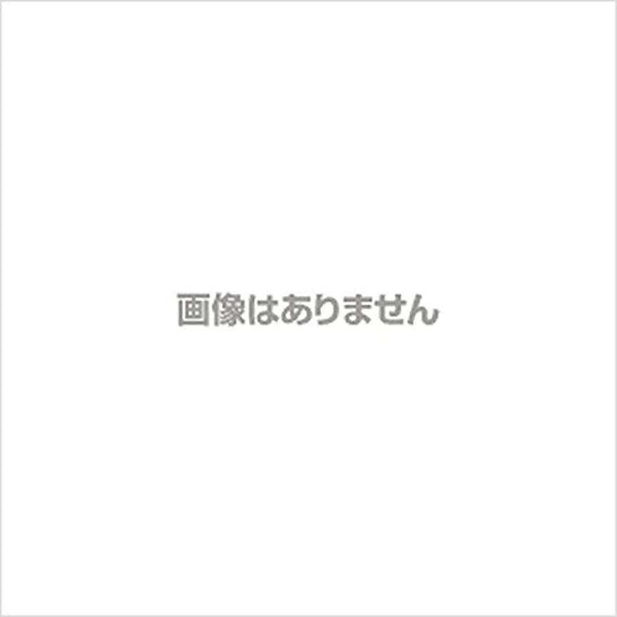 反発豆アンソロジー【新発売】EBUKEA エブケアNO1004 プラスチックグローブ(パウダーフリー?粉なし)Sサイズ 100枚入(極薄?半透明)