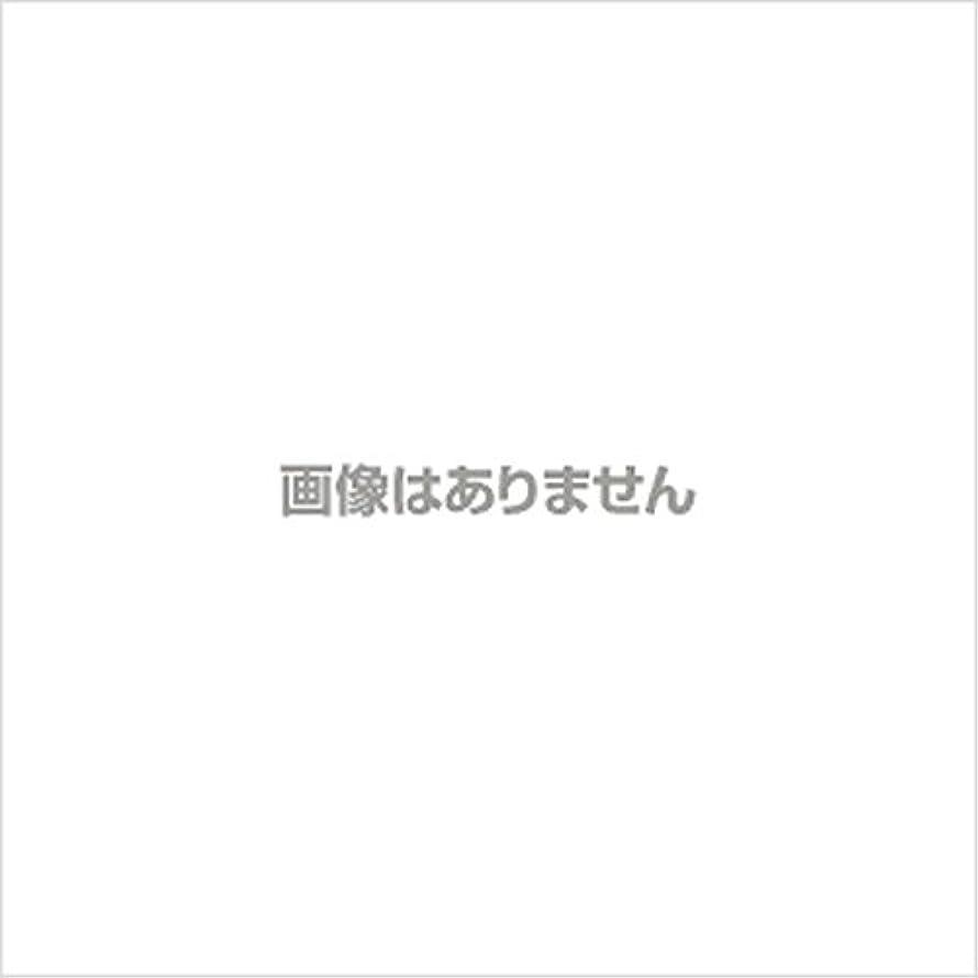 無視する福祉消す【新発売】EBUKEA エブケアNO1002 プラスチックグローブ(粉付)Mサイズ 100枚入(極薄?半透明)