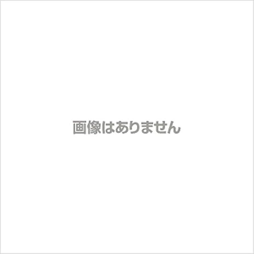 マーカー旋律的時代遅れ【新発売】EBUKEA エブケアNO1004 プラスチックグローブ(パウダーフリー?粉なし)Sサイズ 100枚入(極薄?半透明)