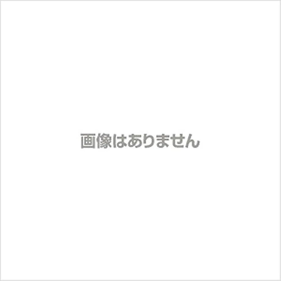 付き添い人炎上ウォーターフロント【新発売】EBUKEA エブケアNO1004 プラスチックグローブ(パウダーフリー?粉なし)Sサイズ 100枚入(極薄?半透明)