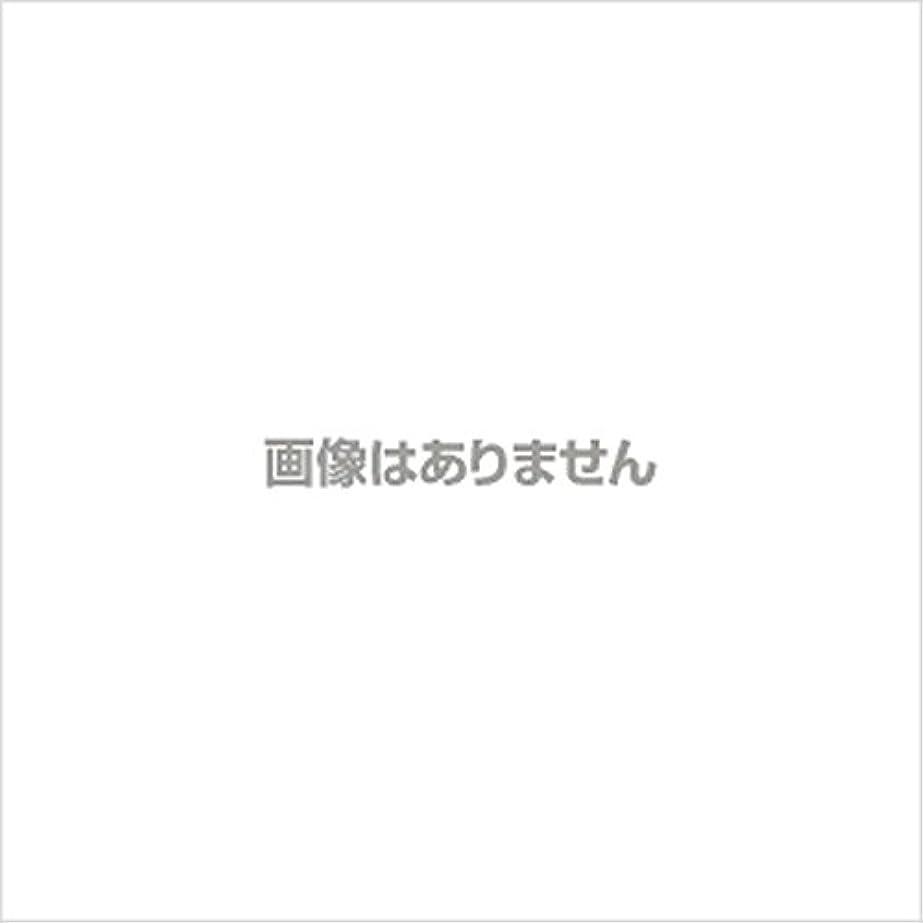 戸棚中絶コントラスト新発売】EBUKEA エブケアNO1004 プラスチックグローブ(パウダーフリー?粉なし)Mサイズ 100枚入(極薄?半透明)