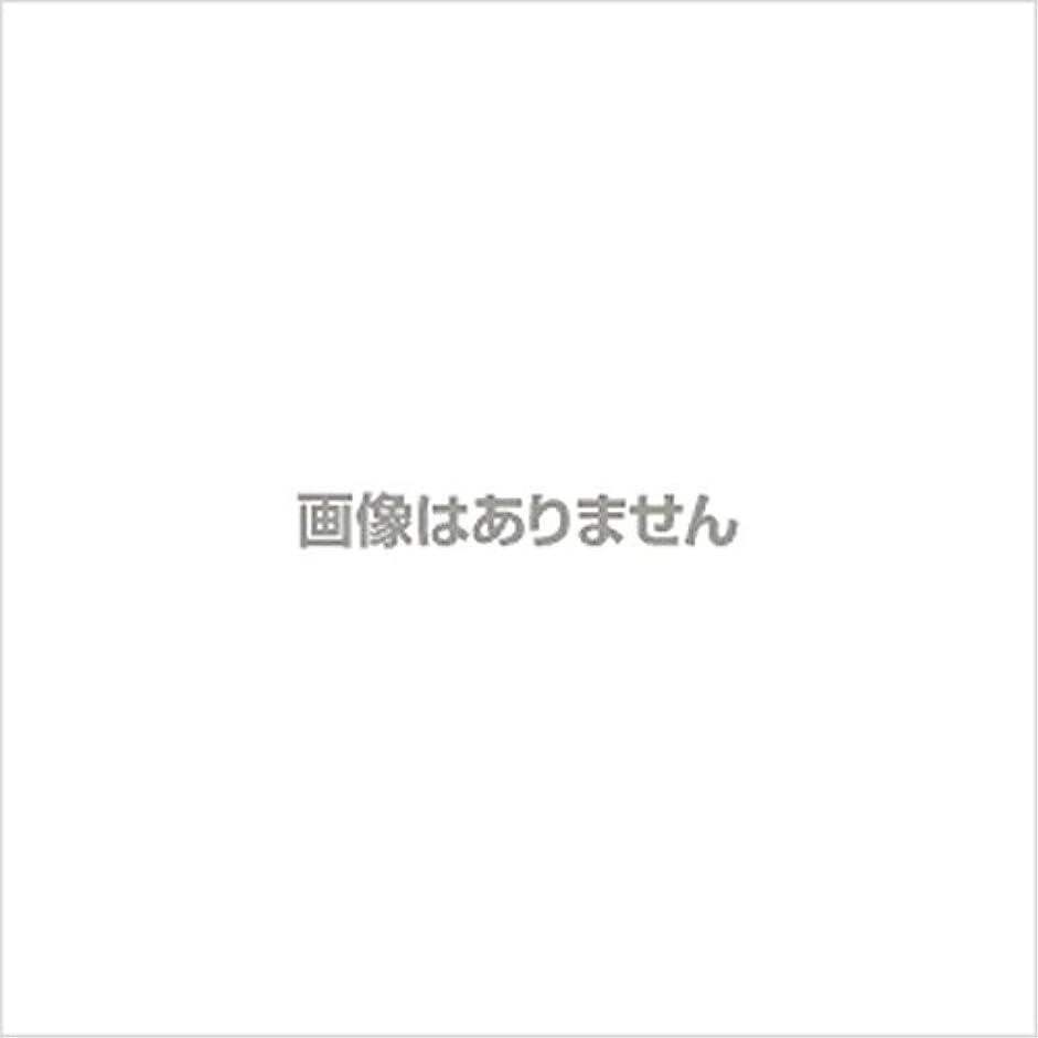スケッチ代替定刻【新発売】EBUKEA エブケアNO1004 プラスチックグローブ(パウダーフリー?粉なし)Sサイズ 100枚入(極薄?半透明)