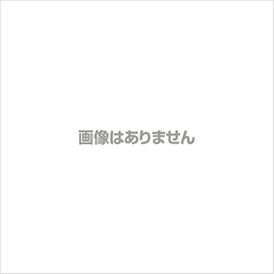 クリスチャンセンサー徹底【新発売】EBUKEA エブケアNO1004 プラスチックグローブ(パウダーフリー?粉なし)Sサイズ 100枚入(極薄?半透明)