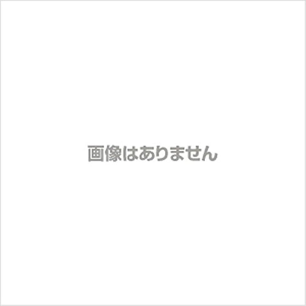 つまらないグッゲンハイム美術館いわゆる【新発売】EBUKEA エブケアNO1002 プラスチックグローブ(粉付)Mサイズ 100枚入(極薄?半透明)