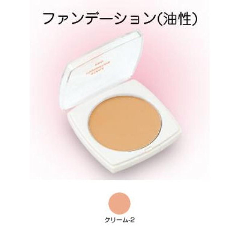発生タイムリーなステージファンデーション プロ 13g クリーム-2 【三善】