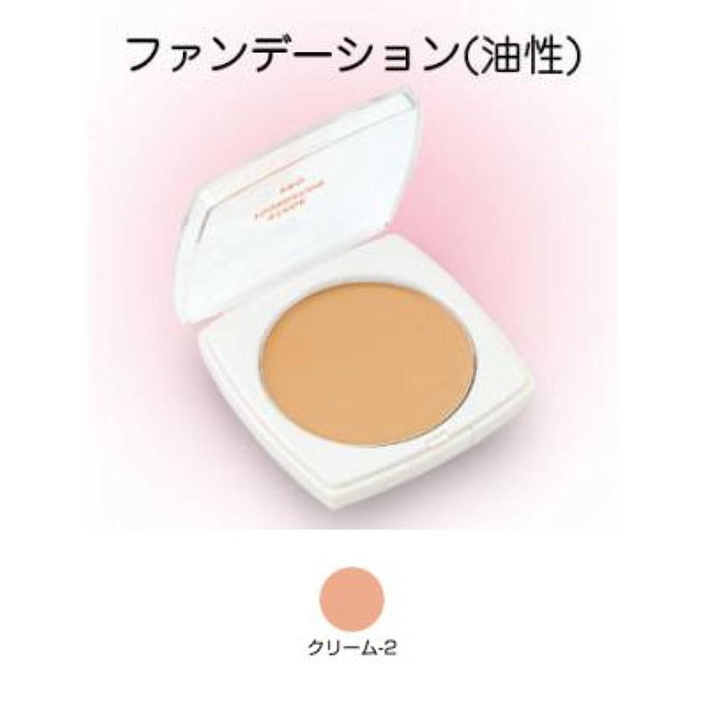 空白衝撃覗くステージファンデーション プロ 13g クリーム-2 【三善】
