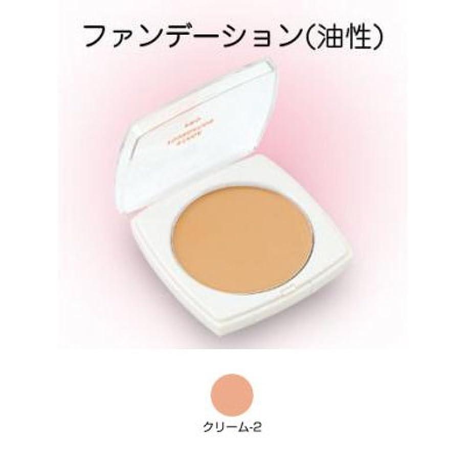 半円エスカレートバンジョーステージファンデーション プロ 13g クリーム-2 【三善】