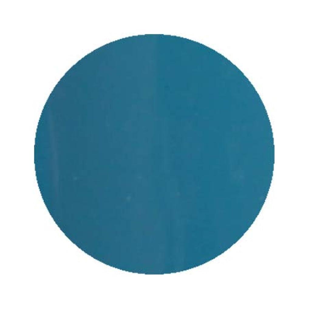 穀物ワークショップ国際Inity アイニティ ハイエンドカラー BL-05M ティールブルー 3g