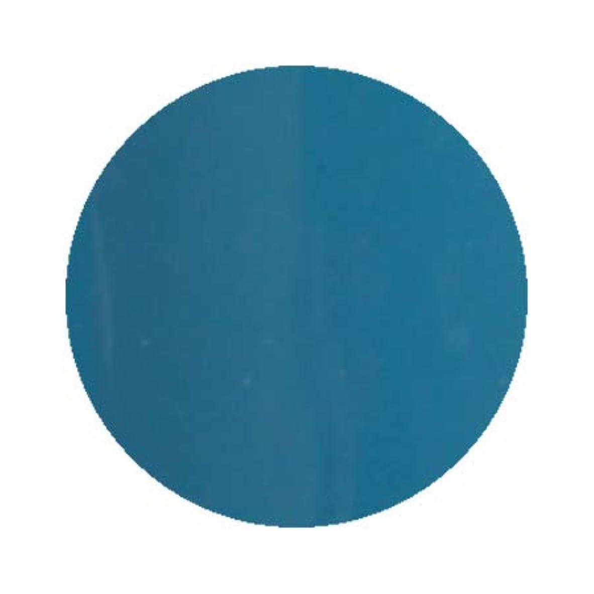 かすかな透けて見える蓄積するInity アイニティ ハイエンドカラー BL-05M ティールブルー 3g