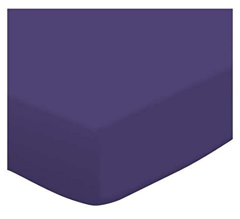 SheetWorld FLAT Crib/Toddler Sheet - Purple Jersey Knit - Made In USA [並行輸入品]