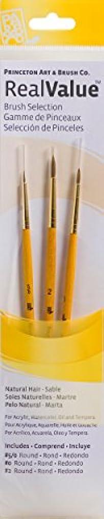 海外公平課税PRINCETON(プリンストン) Brush Set-9105 3本セット