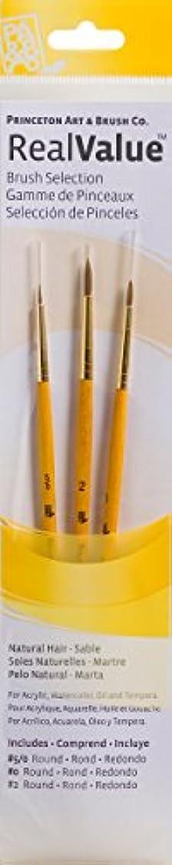 クランプ単なる反論者PRINCETON(プリンストン) Brush Set-9105 3本セット
