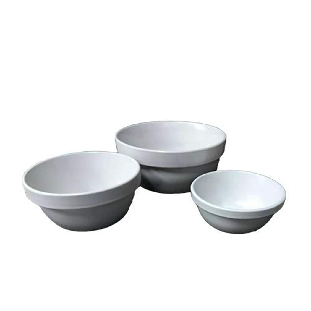 ペット用食器 REPLUS 陶器のみ ????専用 Sサイズ