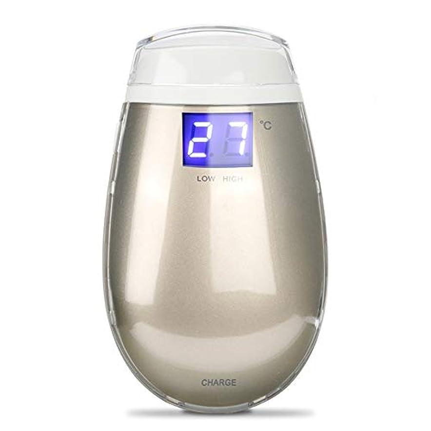 口式ジュース顔の美しさデバイス RF たるみラジオ周波数ドットマトリックス温度コントロール用女性しわ除去スキンリフティングゴールド