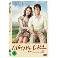 韓国映画 ソ・ジヘ、ソン・チャンイ主演「立って寝る木」DVD