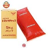 ハグルマ JAS標準 トマトケチャップ5kg袋パック×2袋入
