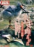 トキよ舞い上がれ-巣立ちの記録-[DVD]