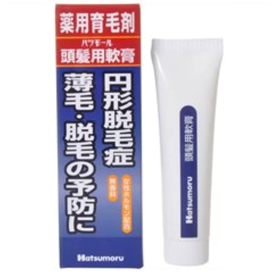 インレイスパイ正義【田村治照堂】ハツモール 頭髪用軟膏 25g