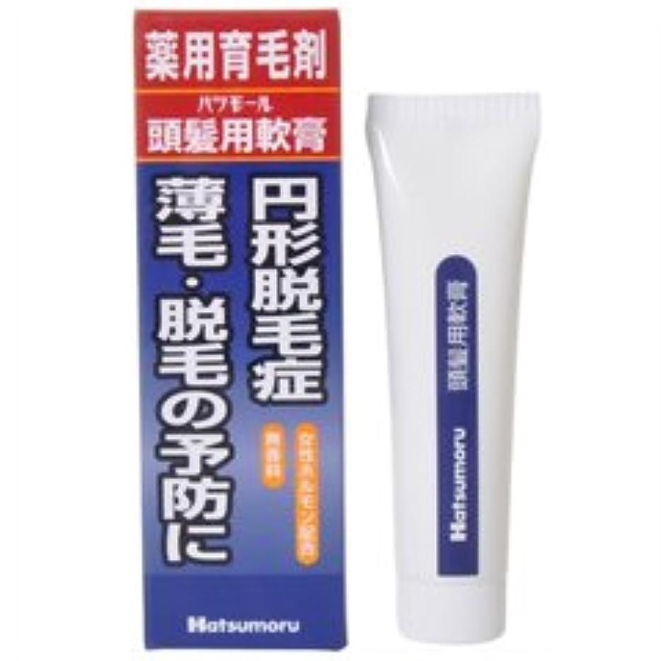 麻酔薬任命図【田村治照堂】ハツモール 頭髪用軟膏 25g
