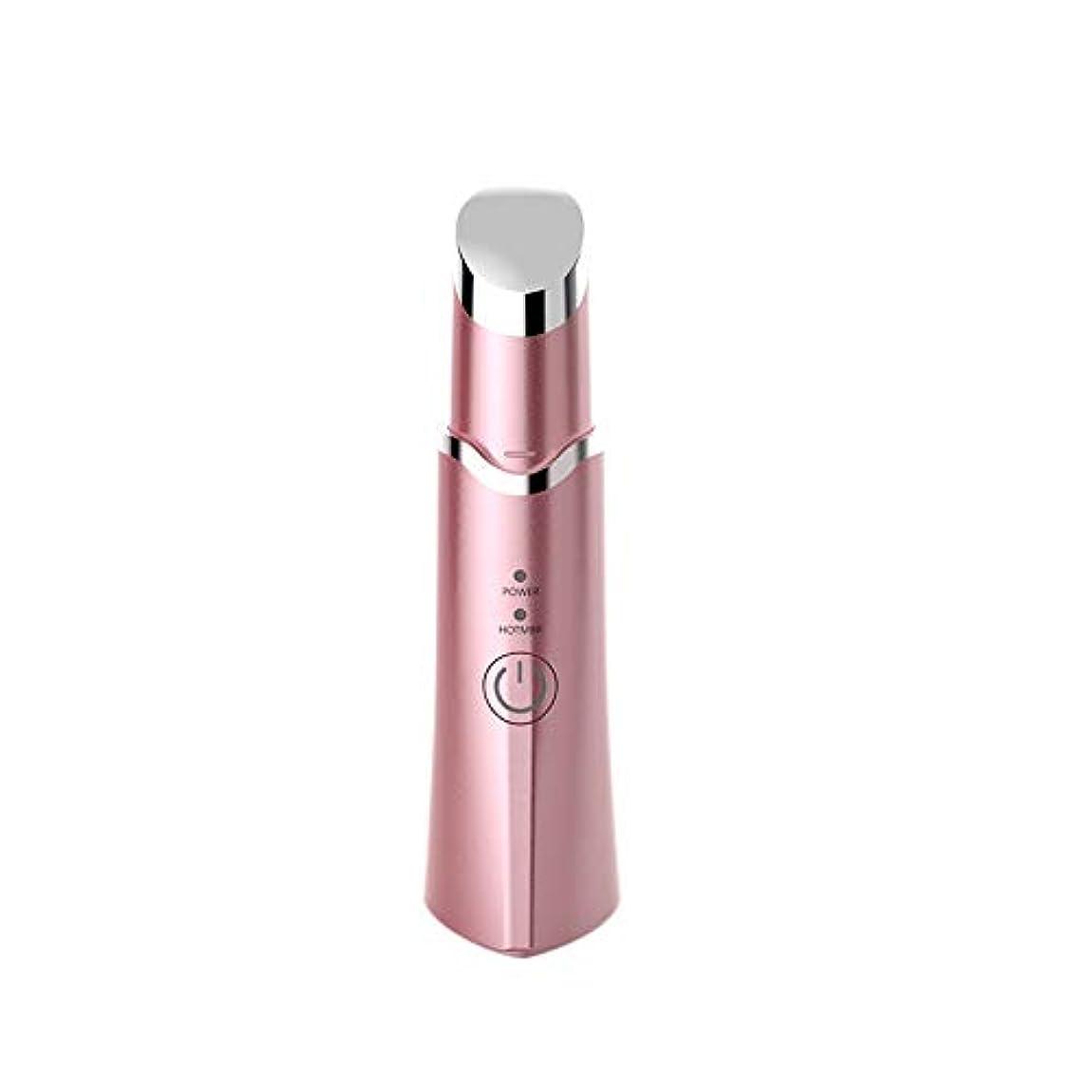 会話船上テーブルを設定する美しい目つきの筆 (ピンク)