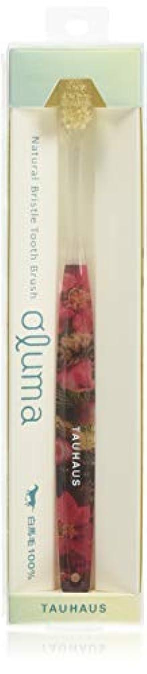 Oluma 白馬毛歯ブラシ(ポインセチア)