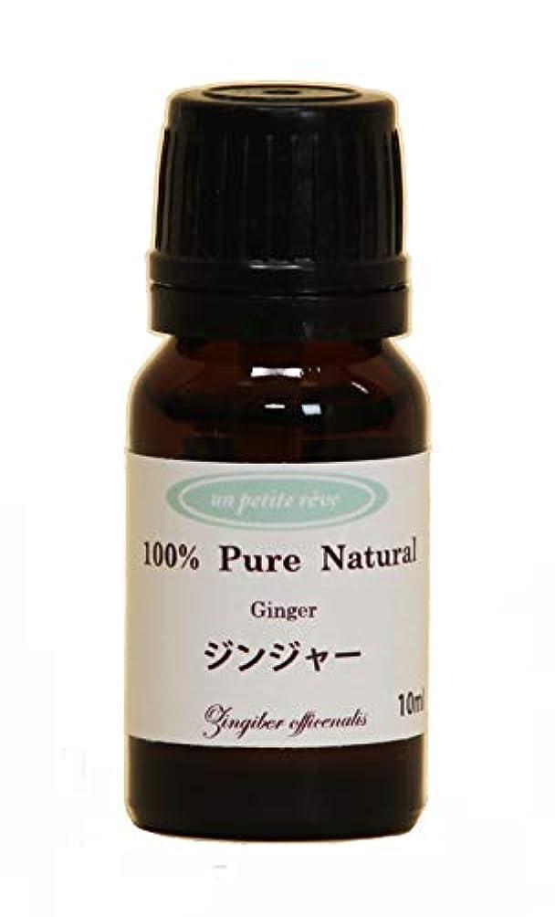 ジンジャー  10ml 100%天然アロマエッセンシャルオイル(精油)