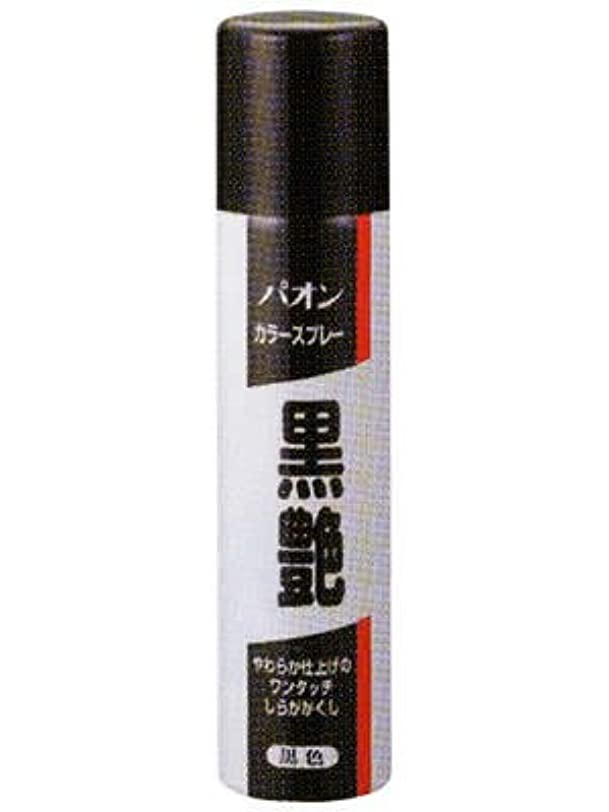 バイパスフィヨルド根絶するシュワルツコフヘンケル(カブ)パオンカラースプレー黒艶黒色60g(RC:1000611666)