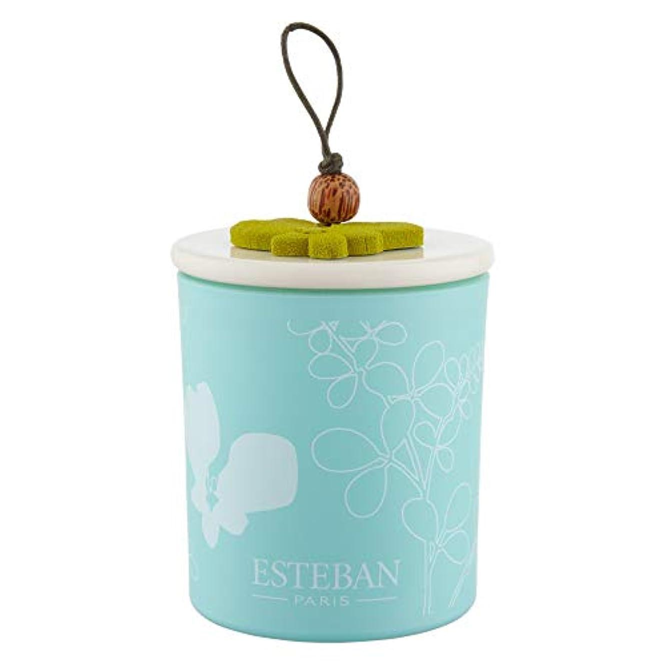 コンソール刻む補う[Esteban ] エステバンは、装飾されたキャンドル170グラムを香りOrchidee - Esteban Orchid?e Scented Decorated Candle 170g [並行輸入品]