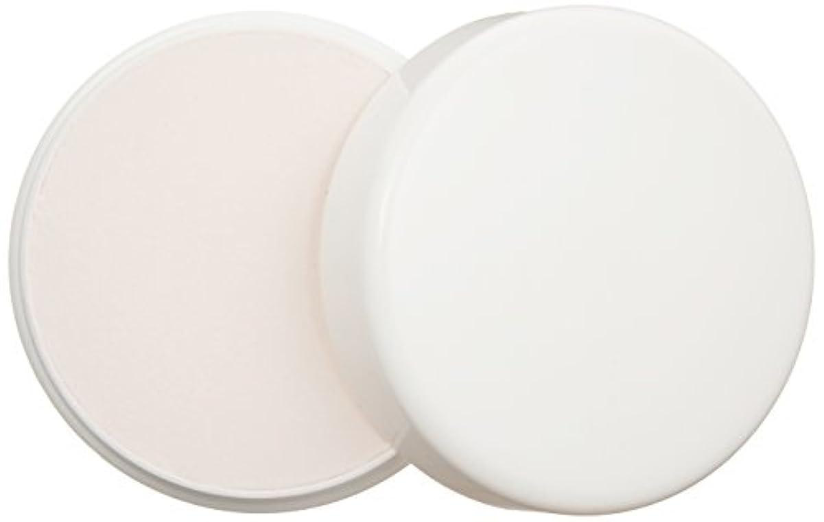 砂利艶驚かすP. Shine 爪磨きパウダー25g 光沢剤