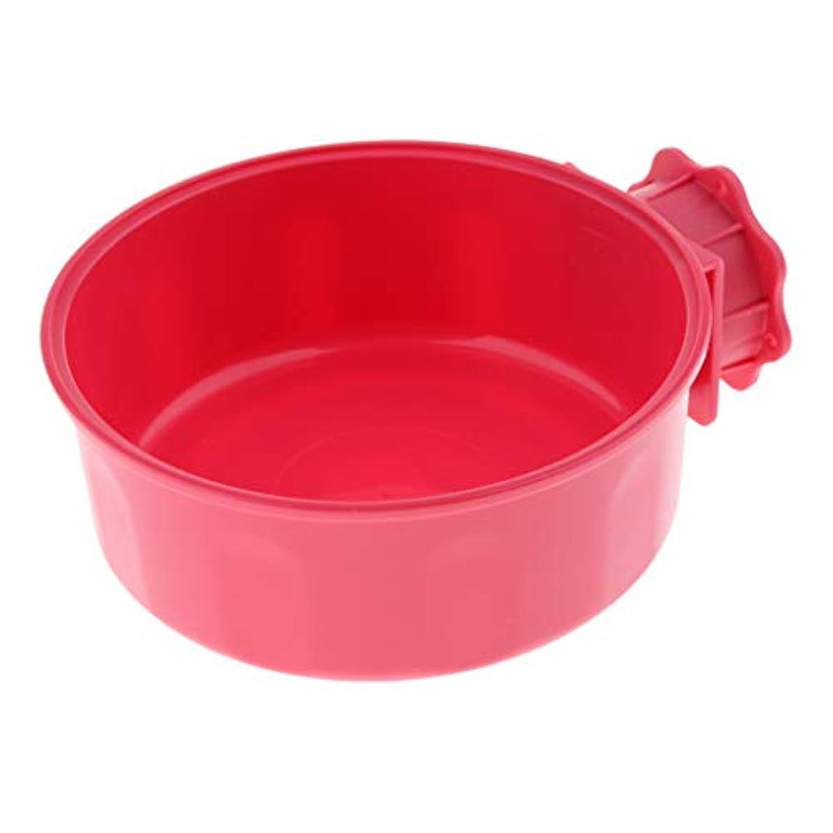 新聞ランクサバントF Fityle 餌入れ 水やり コップ 犬猫ハムスターなど適用 家庭用 旅行用 全3色 - 赤