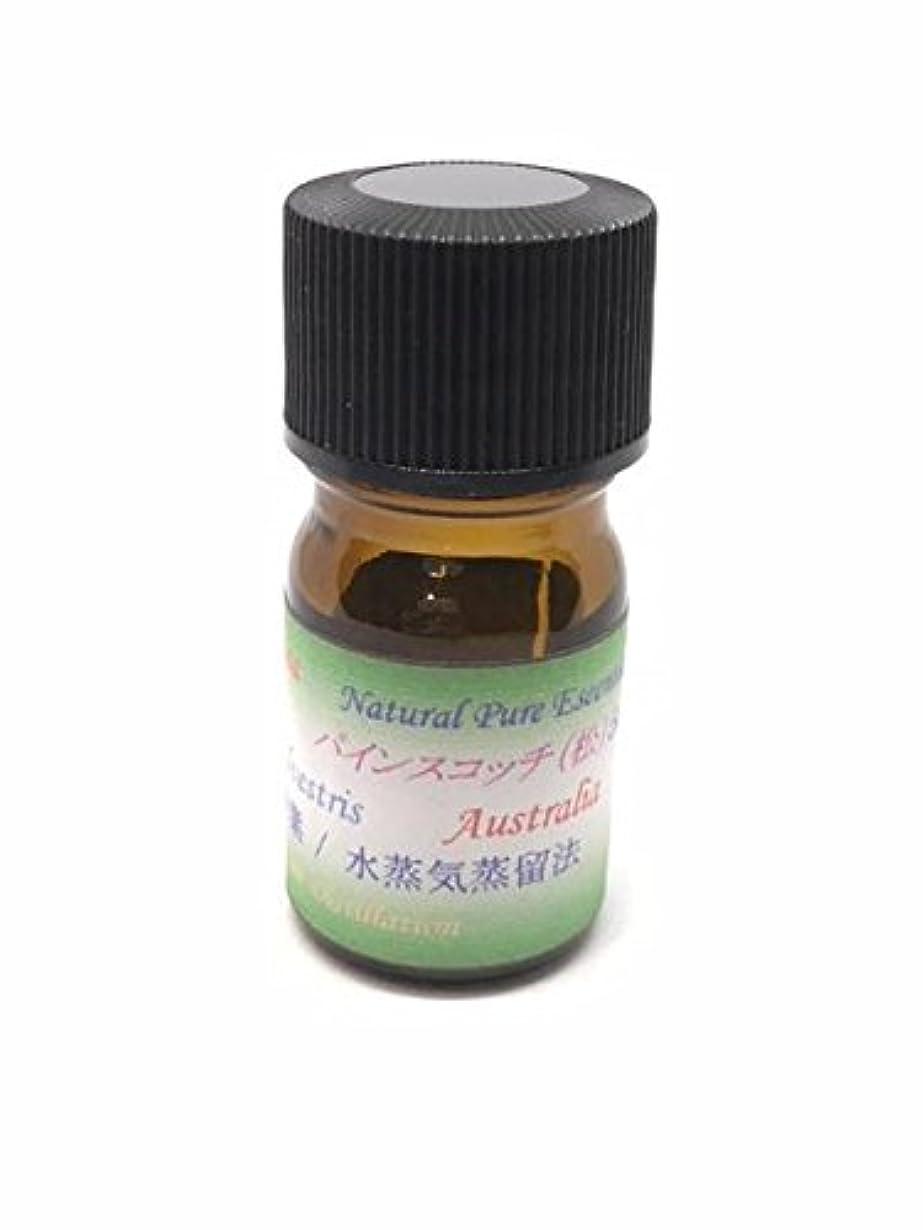 ストレス寄託寄託パインスコッチ 100% ピュアエッセンシャルオイル アロマ精油(松ぼっくりの精油) (10ml)