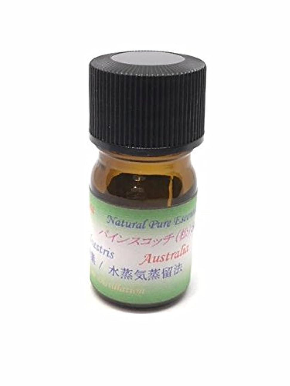 護衛然としたクレーターパインスコッチ 100% ピュアエッセンシャルオイル アロマ精油(松ぼっくりの精油) (5ml)