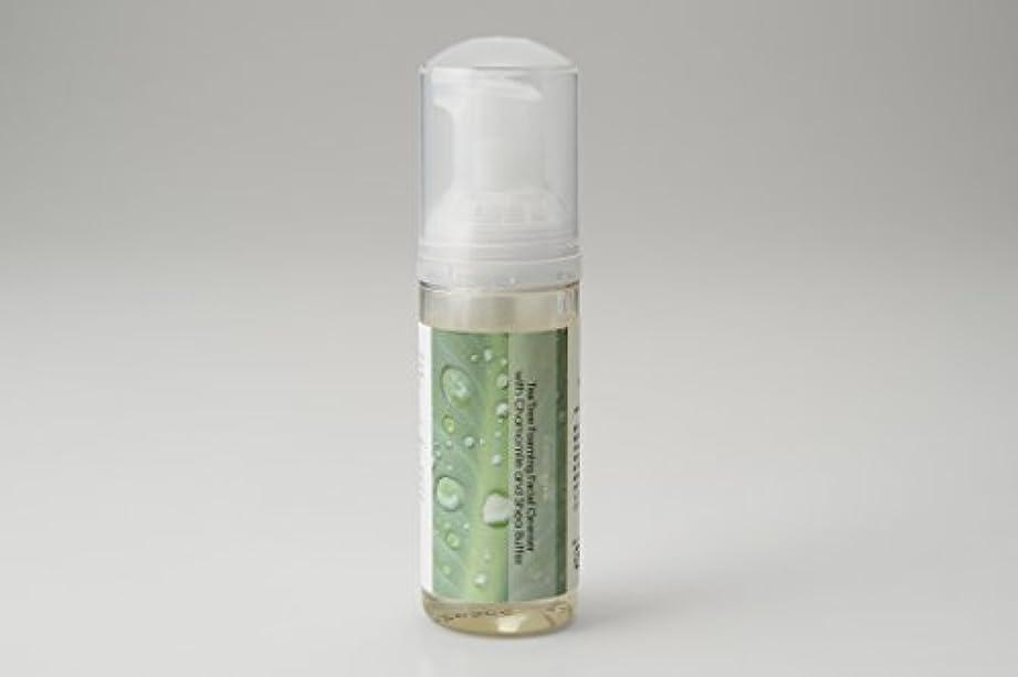 蒸留する落胆させる成り立つティーツリー洗顔フォーム
