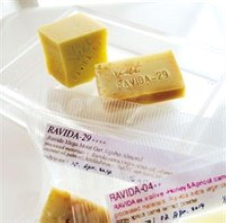 防腐剤流星デコラティブプラントニュート(メルキュール) トライアルセット RAVIDA-04++ /RAVIDA-29++++