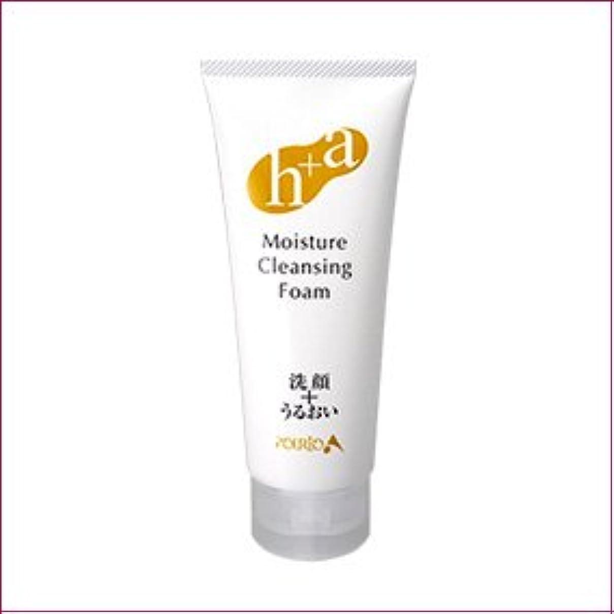 線形先行する中級ポルトA すっきり洗顔+しっとり保湿 モイスチャークレンジングフォーム
