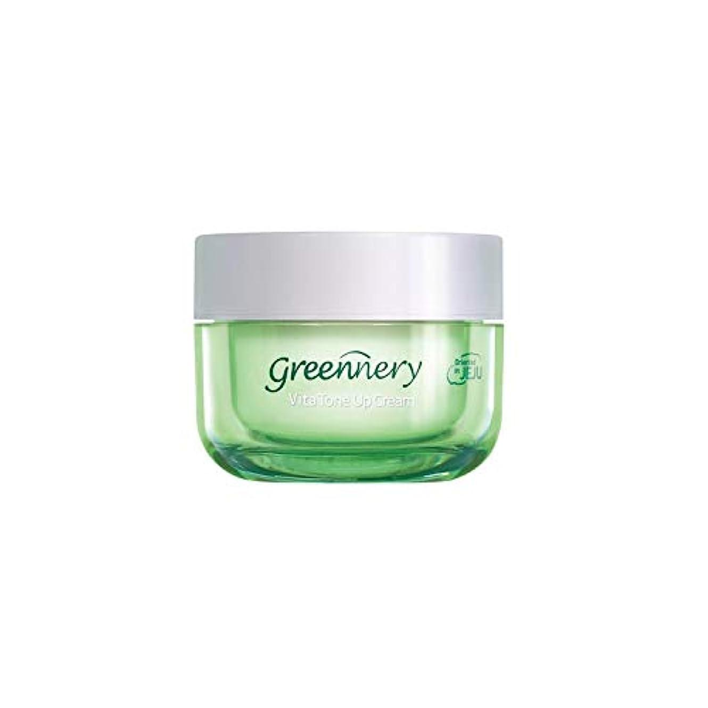 ダメージグリルモデレータ[1+1] [ギフト付き] イントゥスキン(Into skin) グリナリー ビタ トンアップ クリーム 50ml 1+1 デーリーモイスチャークリーム/Intoskin Greennery Vita Tone Up Cream...