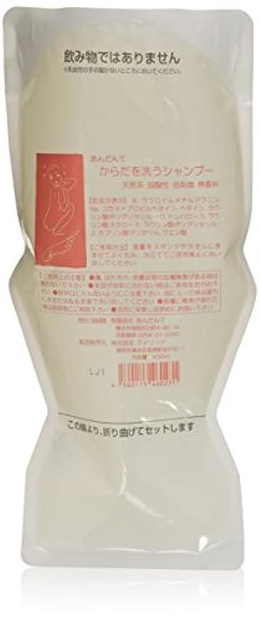 バルブ回復中国あんだんて からだを洗うシャンプー 400ml パウチ