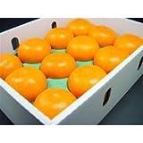 愛媛県産 柑橘 せとか 12個入り