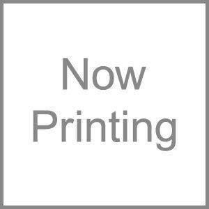 DAINICHI(ダイニチ) 加湿器フィルター 抗菌気化フィルター H060501 家電 季節家電(冷暖房 空調) 除湿器 加湿器 空気清浄機 加湿器 top1-ds-693418-ak