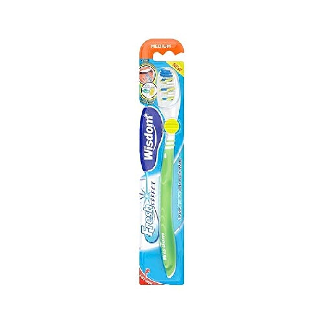 深める脚本家戦い[Wisdom ] 10の知恵フレッシュ効果メディア歯ブラシパック - Wisdom Fresh Effect Medium Toothbrush Pack of 10 [並行輸入品]