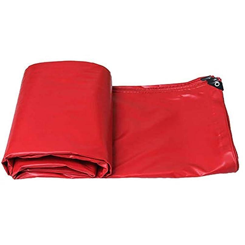 パース数顕現12J-weihuiwangluo 屋外テント防水防水シート引き裂き防止防水シートテントステッチオーニングシェード (Color : A, サイズ : 6×4m)