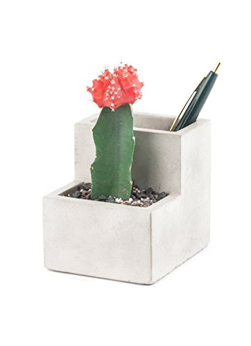 Concrete Desktop Planter コンクリート...