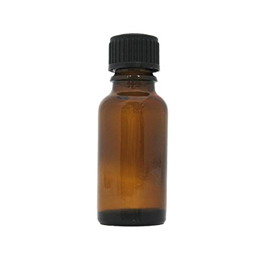 角度実行する解き明かす茶色遮光瓶 20ml (ドロッパー付)