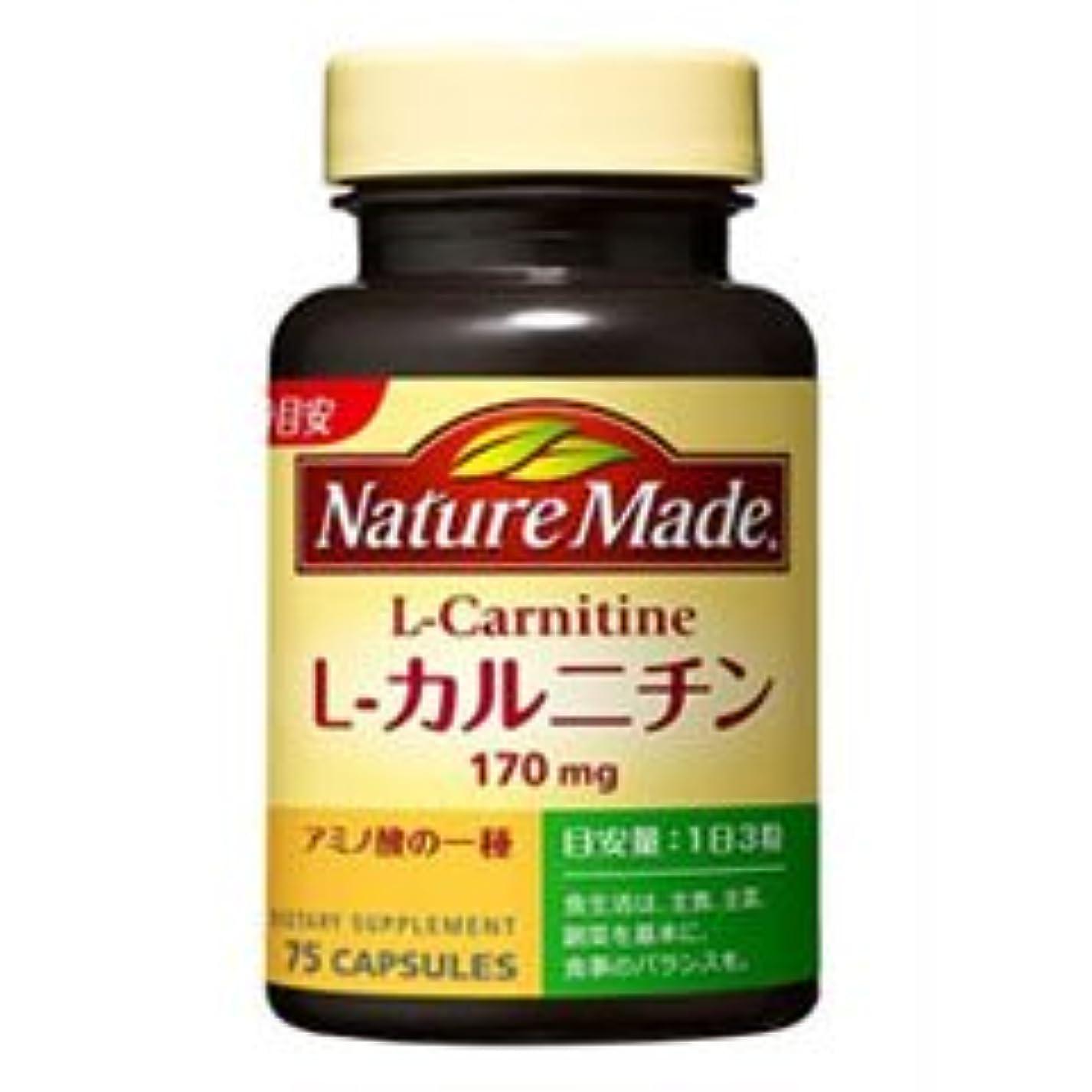 偶然広い扱いやすい【大塚製薬】ネイチャーメイド L-カルニチン 75粒