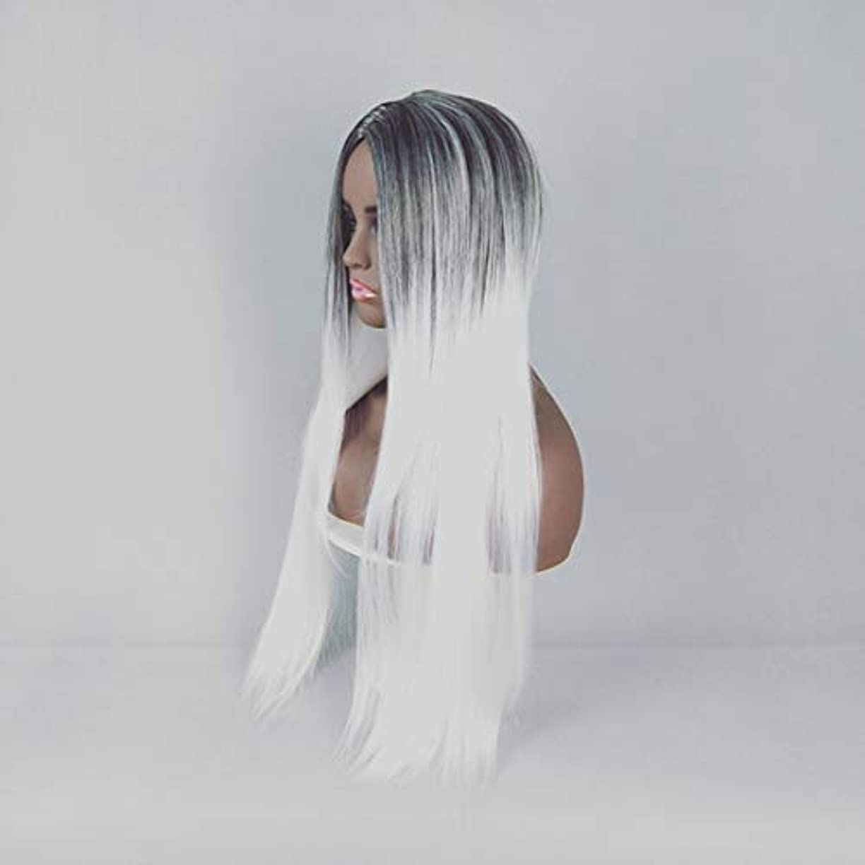 同化する胸面積Kerwinner 合成ストレートストレートヘアウィッグカラーグラデーションフルウィッグ女性のための前髪付き耐熱ウィッグロングウィッグコスプレ/パーティー用 (Color : White)