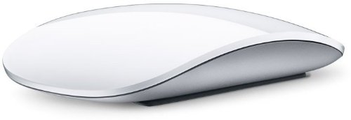 Apple Magic Mouse MB829J/A / アップル