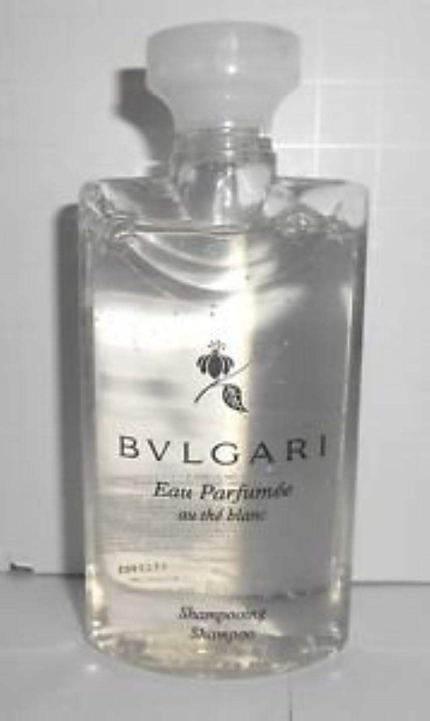 保持する劇場添付Bvlgari Eau Parfumee Au The Blanc (ブルガリ オー パフュ-メ オウ ブラン) 2.5 oz (75ml) シャンプー