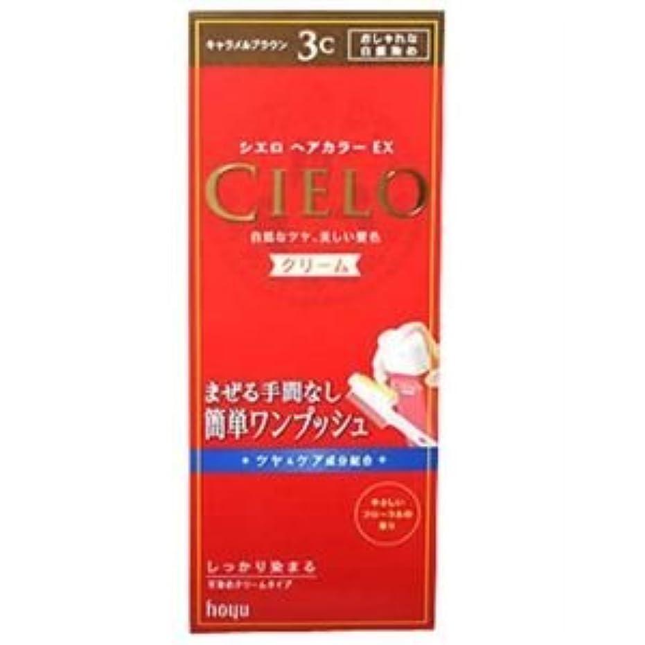 モンスター知覚的重大シエロ ヘアカラーEX クリーム3C (キャラメルブラウン) 7セット