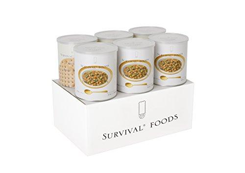 1 FSV SF大缶ファミリーセット(野菜 60食相当)